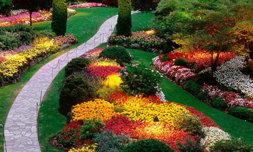 Seattle Landscape Design Services - Landscape Design Seattle, WA - Arbor Tree Care